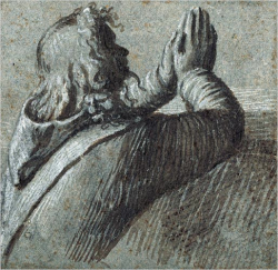 Praying Man :: Vittore Carpaccio