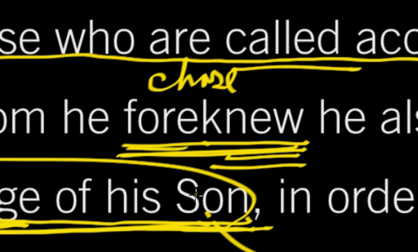 Conformed to the Image of Christ