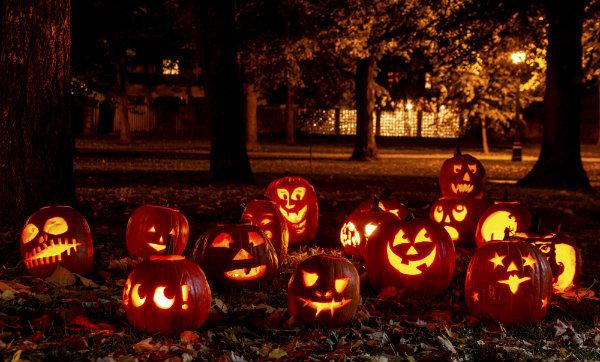 Take Halloween Captive